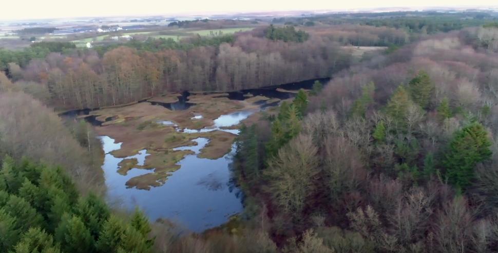 Dronefoto af Pebermosen i Hammer Bakker ved Vodskov i Nordjylland. Foto: Jan Høst-Aaris