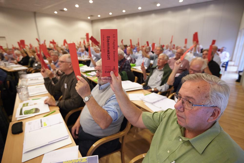 Afstemning på Faglige Seniorers kongres 2013
